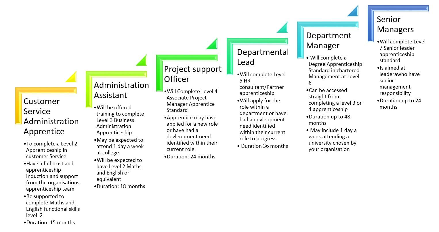 Career Progression Nhs Apprenticeship Hub